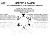 thumbnail of GESTIRE IL PANICO